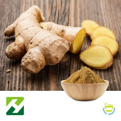 Ginger Root Extract 5% HPLC (25kg Drum) by Organic Herb Inc.