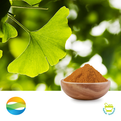 Ginkgo Biloba Extract 24/6 by CCGB