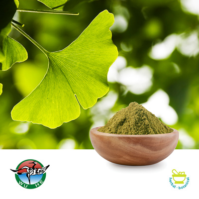 Ginkgo Leaf Powder by Ningbo Traditional Chinese Pharmaceutical Corp.