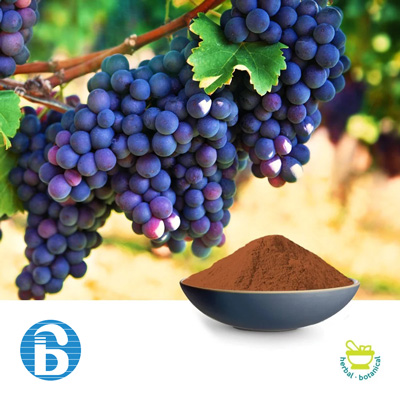Grape Seed Extract 95% OPC USP by Bannerbio Nutraceuticals, Inc.