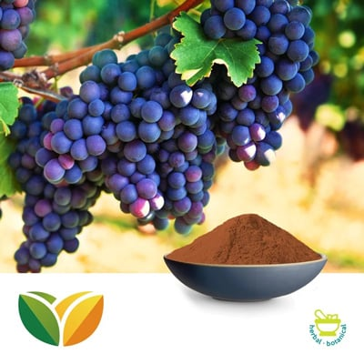 Grape Seed Ext 95% Proan. 70% Poly by Shandong Tianhua Pharmaceutical Co., Ltd.