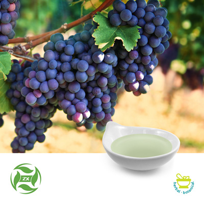 Grape Seed Oil (25kg Drum) by Ji'An Zhongxiang Natural Plant Co., Ltd