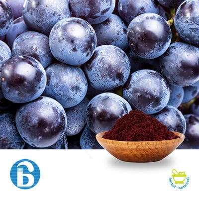 Grape Skin Extract 20% Polyphenols by Bannerbio Nutraceuticals, Inc.