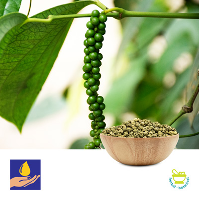 Dehydrated Green Peppercorns by Sark Spices