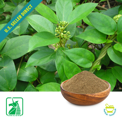 Gymnema Sylvestre P.E. 25% by Unicorn