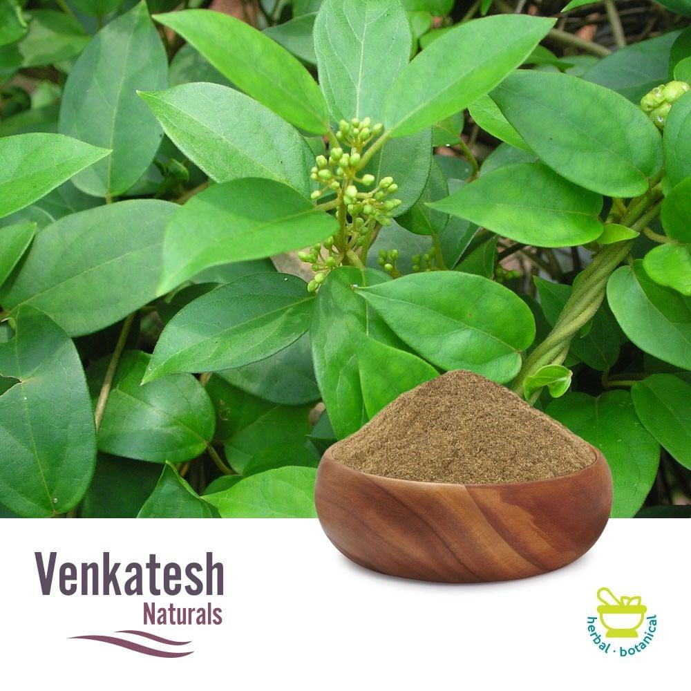 Gymnema Sylvestre P.E.25% GA by Gravimetry by Venkatesh Naturals