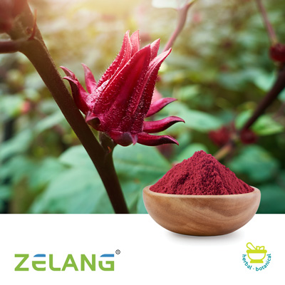 Hibiscus Flower 9% Anthocyanidins by Nanjing Zelang Medical Technology Co., Ltd