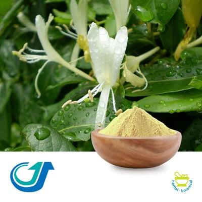 Honeysuckle Flower 5:1 Full-Spectrum Extract by Tianjiang Pharmaceutical Co., Ltd.