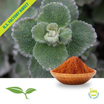 Horehound Herb Powder by American Botanicals