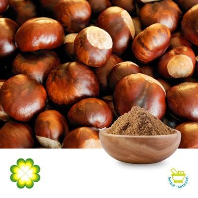 Horse Chestnut Extract 20% Aescin by Rainbow