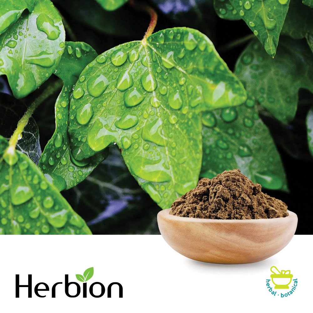 Ivy Leaf P.E., Hederacoside C 8-12% by Herbion Naturals