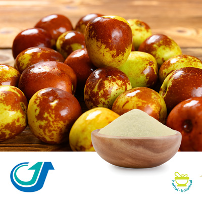 Jujube Fruit 5:1 Full Spectrum Extract by Tianjiang Pharmaceutical Co., LTD.