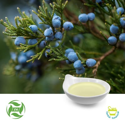 Juniper Oil (25kg Drum) by Ji'An Zhongxiang Natural Plant Co., Ltd