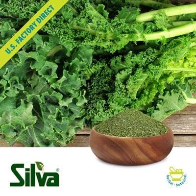 Kale Flakes by Silva International