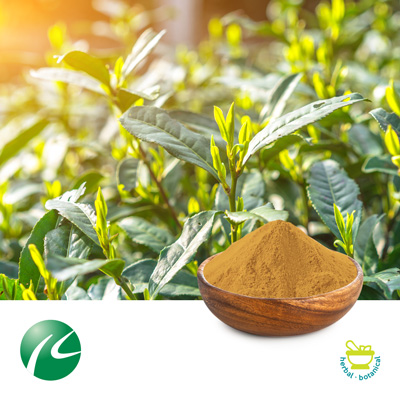 L-Theanine 20%(Green Tea Extract) by Hua Kang Biotechnology