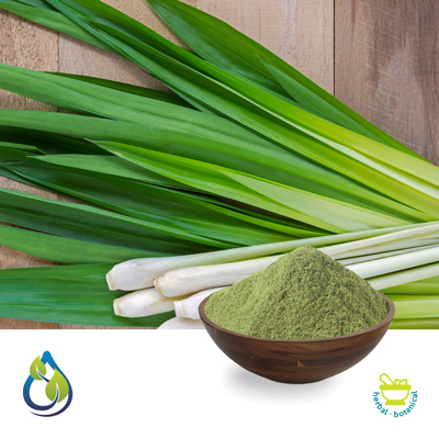 Lemon Grass Powder by S.A.HerbalBioactives