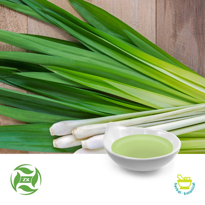 Lemon Grass Oil (25kg Drum) by Ji'An Zhongxiang Natural Plant Co., Ltd
