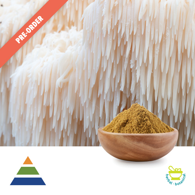 Lion's Mane Mushroom Extract 30% Polysaccharides UV (25kg Drum) by Shaanxi Kingsci Biotechnology Co., Ltd