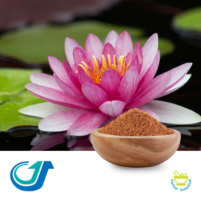 Lotus Seed 10:1 Full Spectrum Extract by Tianjiang Pharmaceutical Co., LTD.