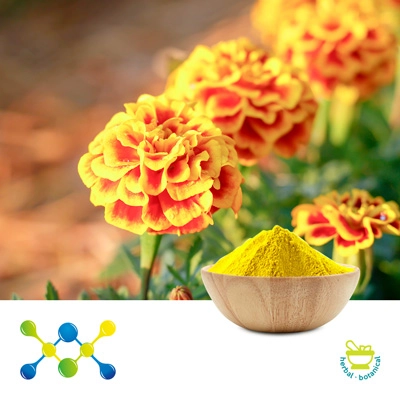 Lutein 5% Powder (Marigold Ext) by Undersun Biomedtech