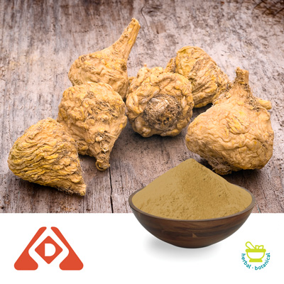 Maca Extract 4:1 TLC by Shaanxi Hongda Phytochemistry Co., Ltd