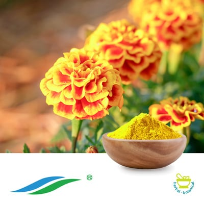 MarigoldExtract 5%-20% Zeaxanthin HPLC by Hunan NutraMax Inc.