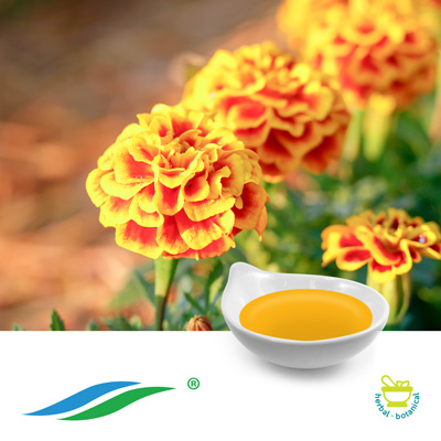 Marigold Extract 20% Lutein Oil HPLC by Hunan NutraMax Inc.