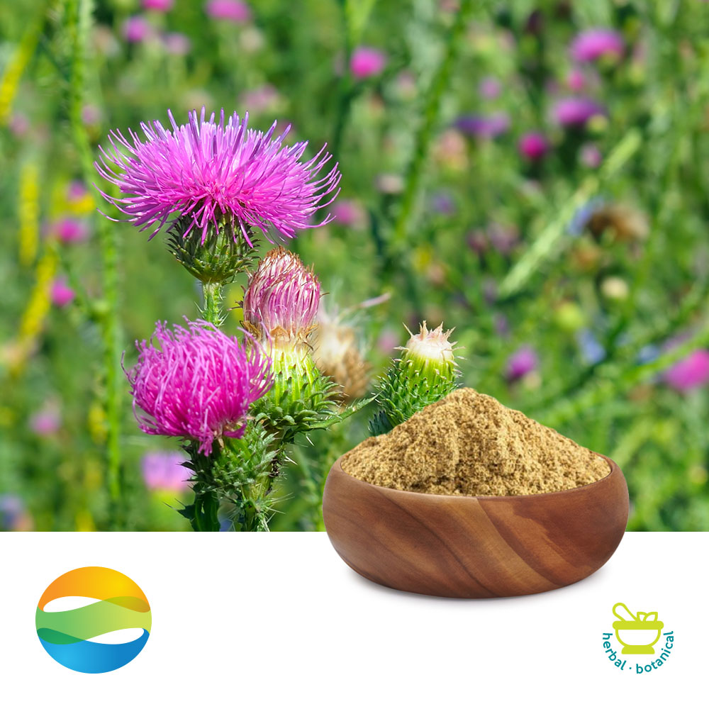 Milk Thistle Ext 80% Silymarin by Chenguang Biotech Group Co., Ltd