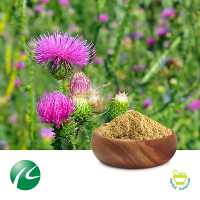 Milk Thistle 80% Silymarin by Hua Kang Biotechnology