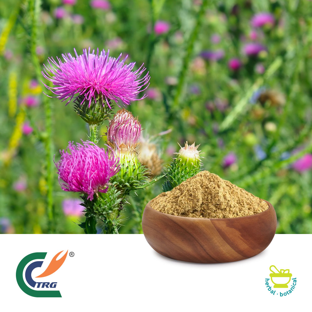 Milk Thistle Extract 80% Silymarin by TRG