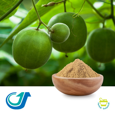 Monk Fruit Extract Powder by Tianjiang