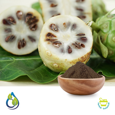 Morinda (Noni) Seed Powder by S.A. Herbal Bioactives Llp
