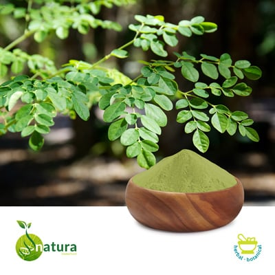 Moringa Leaf Extract 10% Saponins by Natura Biotechnol Private Limited