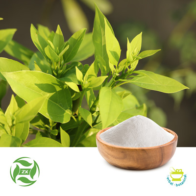 Natural Borneol (25kg Drum) by Ji'An Zhongxiang Natural Plant Co., Ltd