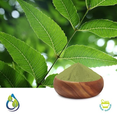Neem Leaves Powder Steam Treated by S.A.HerbalBioactives