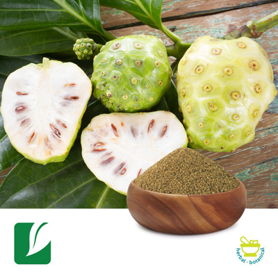 Noni Fruit Powder by Longze Biotechnology