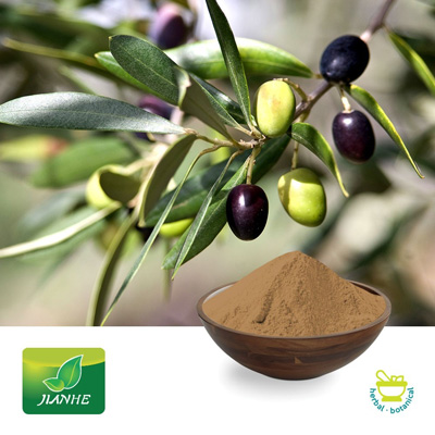 Olive Leaf P.E.40% Oleuropein by Shaanxi Jianhe Bio-Technology Co., Ltd