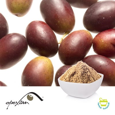 Opextan® (Olive Fruit Extract) by Indena