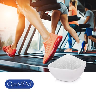 Pure OptiMSM® Flakes by Bergstrom Nutrition