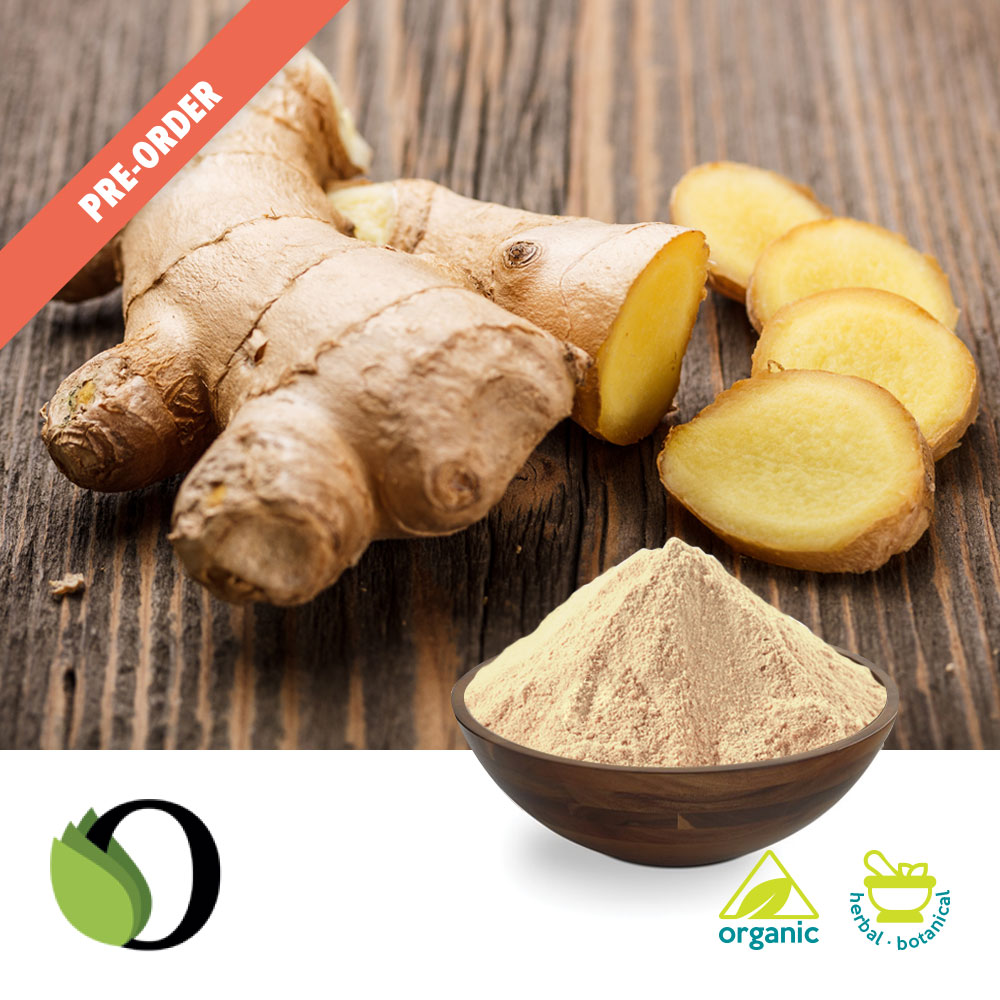 Organic Zingiber officinale powder by Acara Bioherb Private Ltd