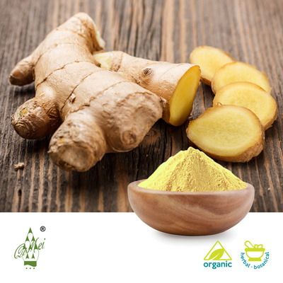 Organic Ginger Root Powder by Qimei Industrial Group Co.,Ltd
