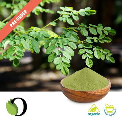 Organic Moringa Leaf Powder by Acara Bioherb Private Ltd