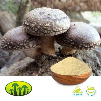 Organic Shiitake powder by Zhejiang Biosan Biotech Co., Ltd.