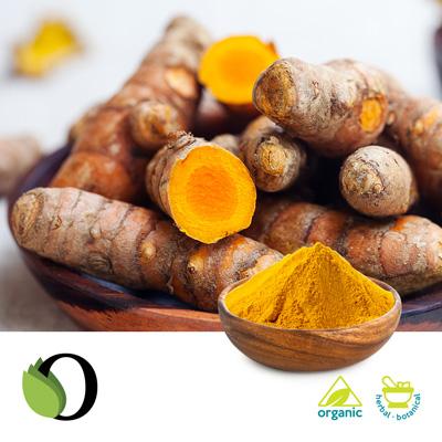 Organic Turmeric Powder by Acara Bioherb Private LTD