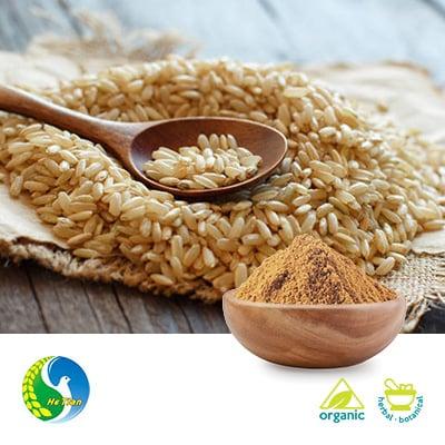Organic Brown Rice Protein 80% 600 Mesh by Panjin Hetian Food