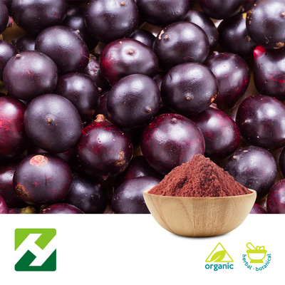 Organic Acai Berry Extract 4:1 (25kg Drum) by Organic Herb Inc.