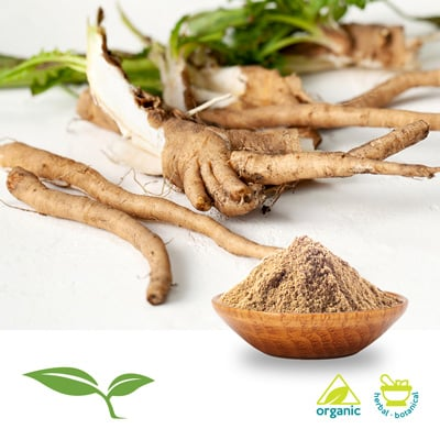 Chicory Root Powder Organic by American Botanicals