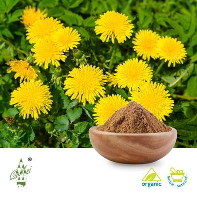 Organic Dandelion Powder by Qimei Industrial Group Co.,Ltd