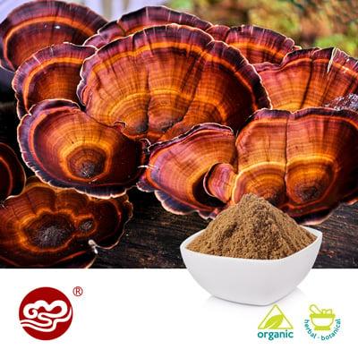 Organic Ganoderma Lucidum Spore Powder(Broken) by Fujian Xiangzhilou (GanoHerb)