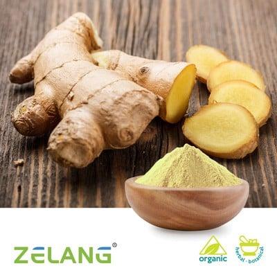 Organic Ginger Root Powder by Zelang